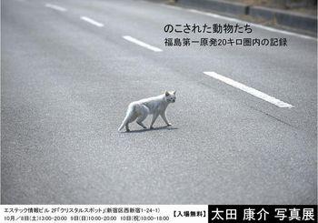 太田001.jpg