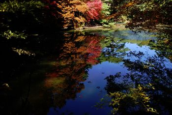 神戸市立公園04.jpg